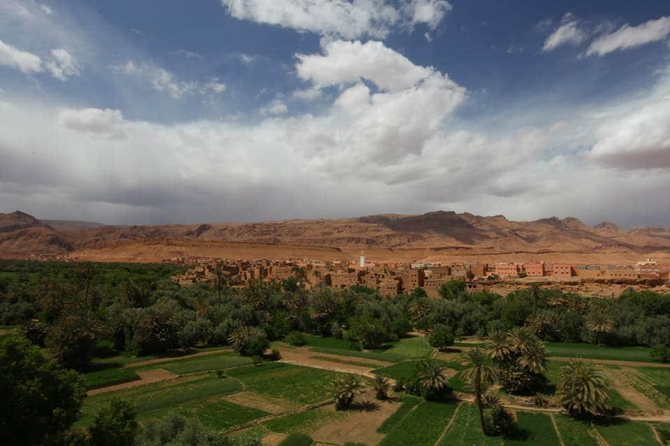 paysages du Maroc : flâner dans les oasis et les palmeraies